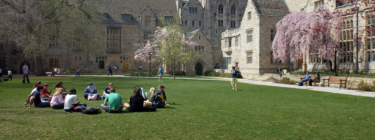 Students sitting together outside during spring